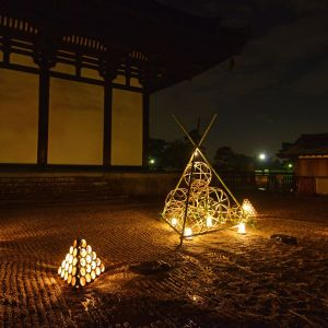 Takayama Bamboo Lights