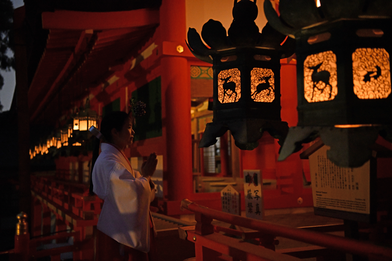 Kasugataisha Shrine Special Admission at Night