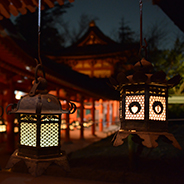 Kasugataisha Shrine special admission at night 春日大社夜間特別拝観